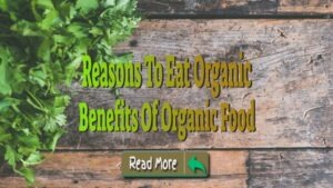 Benefits Of Organic Food – Reasons To Eat Organic